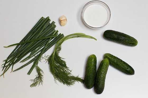 Salat iz ogurcov (1)